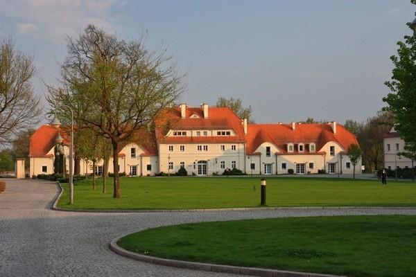 Centru Tineret Krzyżowa